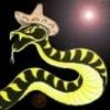 Demande d'aide pour spo... - dernier message par leserpentmexicain